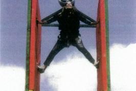 Ninja Wall