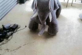 Giddie Up Elephant
